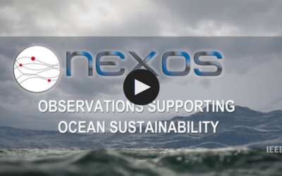An overview of the NeXOS Project
